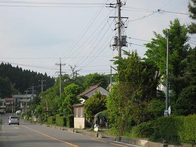 Shirasaka1
